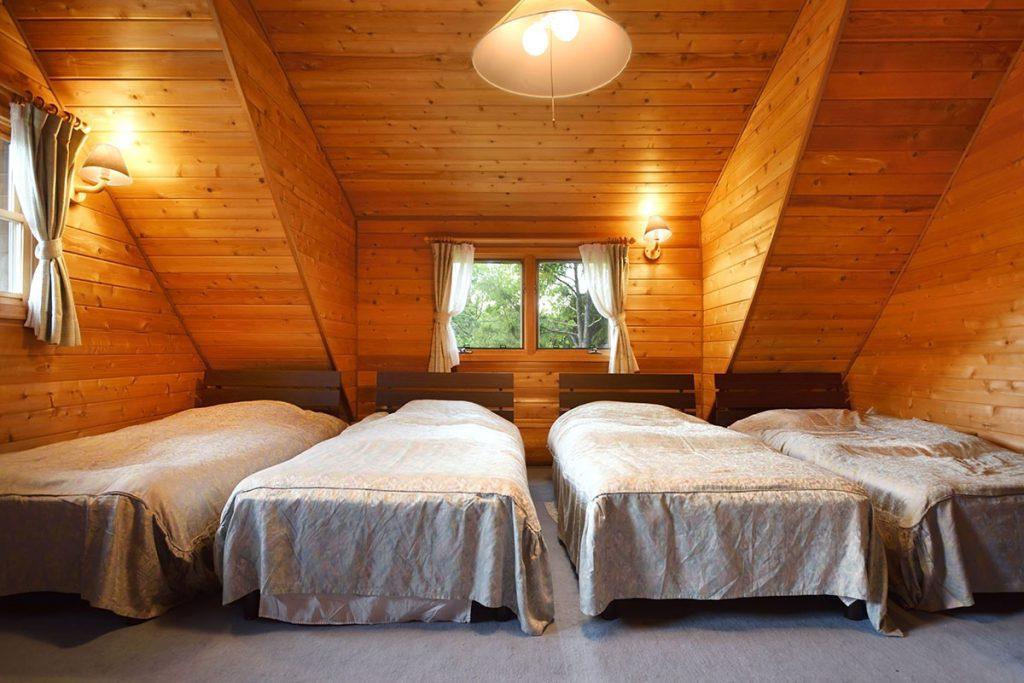 Big log house images 11